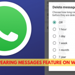 Whatsapp Update: Disappearing Messages Feature Arrives